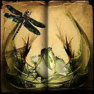 Old Manuscript Images (01) by linskudd