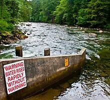 Fish Ladder on the Snoqualmie River by Stacey Lynn Payne