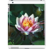 Longwood Gardens - Spring Series 27 iPad Case/Skin