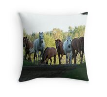 Even Horses Don't Have Great Mornings Throw Pillow