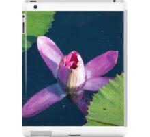 Longwood Gardens - Spring Series 28 iPad Case/Skin