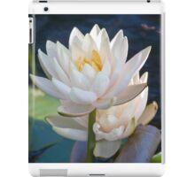 Longwood Gardens - Spring Series 30 iPad Case/Skin