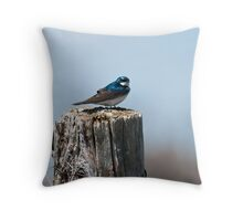Fence-sitting - tree swallow on fence post Throw Pillow
