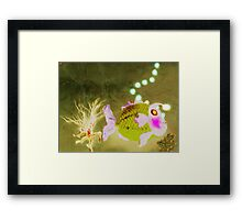 Percy's mate, Norberta Framed Print