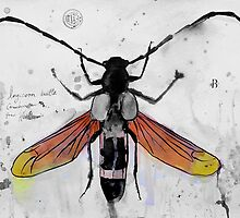 bug (2) by Loui  Jover