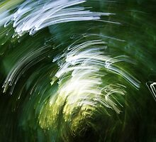 Movement by endorstoi