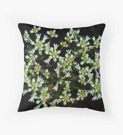 Conospermum taxifolium Throw Pillow