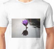 Longwood Gardens - Spring Series 34 Unisex T-Shirt