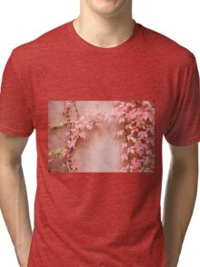 Wall abstract old ivy leaves Tri-blend T-Shirt