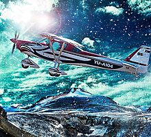 Sport plane by Srdjan Petrovic