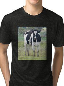 Who Me?  Yarraman, Qld Australia Tri-blend T-Shirt