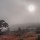 Morning Fog by Rod Wilkinson