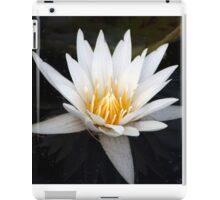 Longwood Gardens - Spring Series 37 iPad Case/Skin