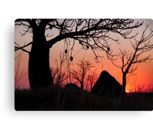 Boab and termite mound sunset Canvas Print