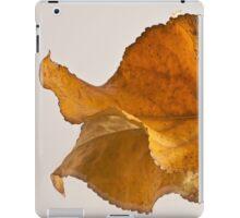 Seeing Double Autumn Leaf  iPad Case/Skin