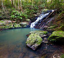 Kondalilla Falls, QLD - Australia by Jason Asher