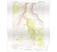 USGS Topo Map Oregon Steelhead Falls 281639 1962 24000 Poster