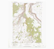 USGS Topo Map Oregon Steelhead Falls 281639 1962 24000 Baby Tee