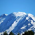 Mt Adams, Washington by Loisb