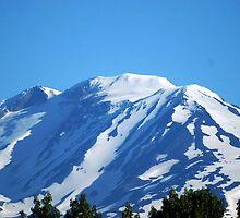 Mt Adams, Washington by Loisb