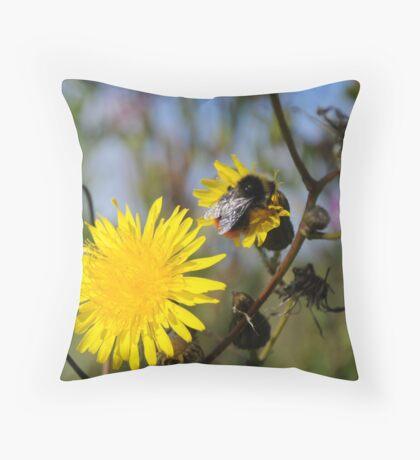 Dandelions. Throw Pillow