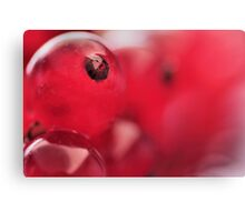Delicious Red Berries... Canvas Print