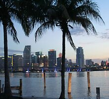 The City of Sun and Fun, Miami by Elizabet Chacon