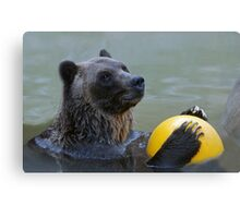 Play With Me?  Canvas Print