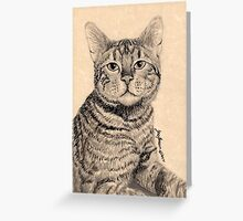 Bengal Ruler Greeting Card
