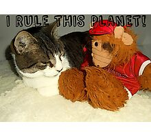"""I Rule This Planet"" Cat Vs Alf Puppet Photographic Print"