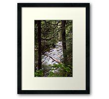 Denny Creek, Washington Framed Print