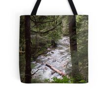 Denny Creek, Washington Tote Bag
