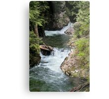 Franklin Falls, Denny Creek, Snoqualmie Forest Metal Print
