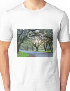 Tree Lined Street In Wilmington, NC Unisex T-Shirt