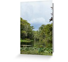 Silver River Greeting Card