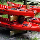 Silver River Kayaks by Laurie Perry