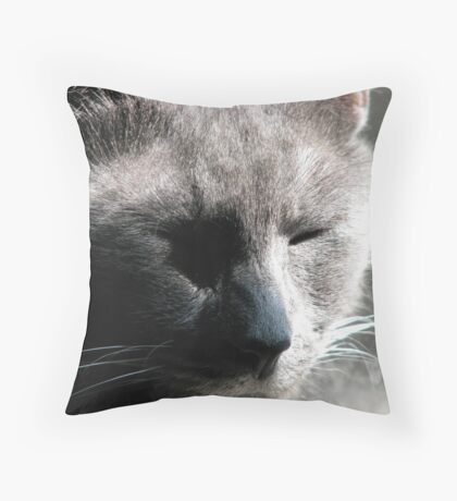 Silverwolf is Content Throw Pillow