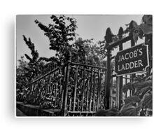 Jacob's Ladder (mono) Metal Print