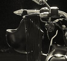 The Meridian Chapter, Harley Davidson Owners Club by ElsieBell