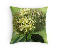 *Just Green Hydrangea* Throw Pillow