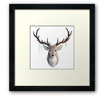 Sacred Deer Framed Print