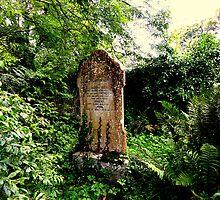 Old graveyard by Fara