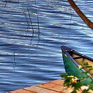 The Canoe  by Michael Schaefer