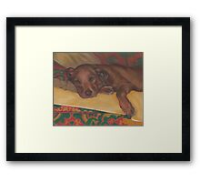 Gentle Lab Framed Print