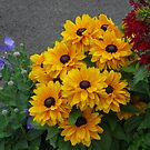 Golden Beauties - Floral Display by BlueMoonRose