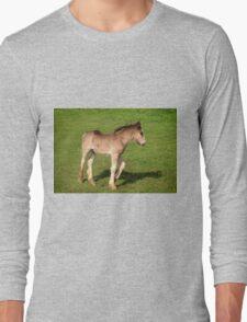 Foal Long Sleeve T-Shirt