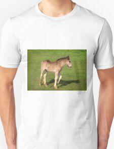 Foal Unisex T-Shirt