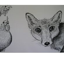 Hello Mr Fox! Photographic Print