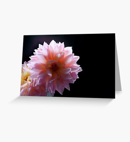 One and Only II Greeting Card