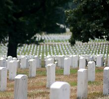 The Stregnth of our Fallen Soldiers by kremphoto